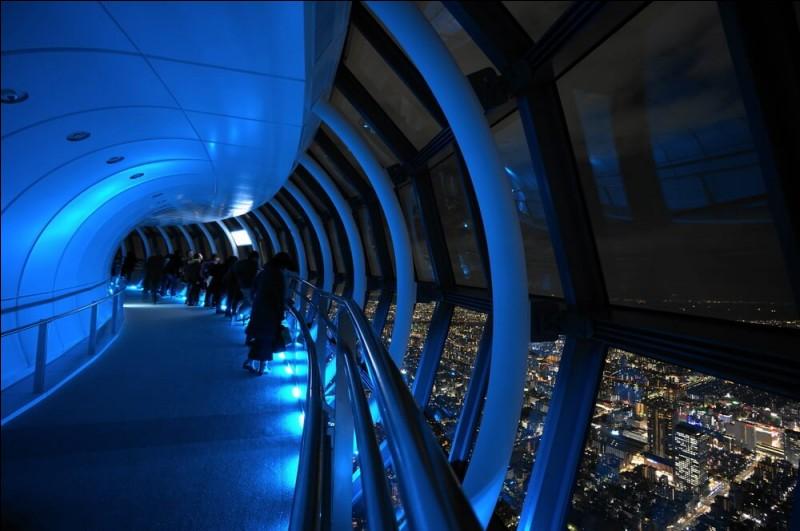 Quelle est la plus haute tour du Japon avec 634 mètres ?