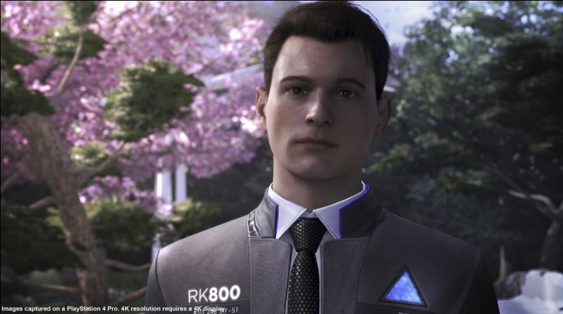Connor travaille pour la police. Quel est son objectif ?