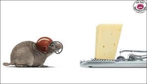 Gastronomie/ géographie : le gruyère est un fromage suisse au lait de vache entier, à pâte pressée cuite, mais au lait cru. Sa meule, de forme ronde, et de dimensions : pour sa hauteur, de 9,5 à 12 cm, de 55 à 65 cm, concernant son diamètre, pour un poids allant de 25 à 40 kg, il tire son nom de la Gruyère. Dans quel canton se trouve ce lieu ?