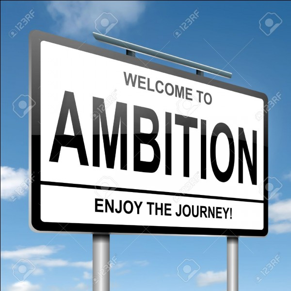 Es-tu ambitieux(se) ?