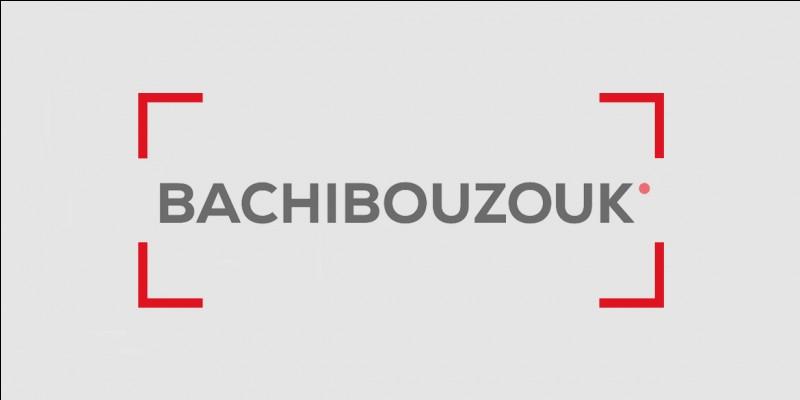 'Bachi-bouzouk', (un de ses jurons préférés). Qu'est-ce qu'un Bachi-bouzouk ?
