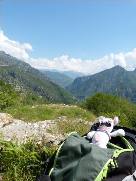 'Bougres d'extrait de crétins des Alpes'. Les crétins des Alpes ont-ils vraiment existé ?