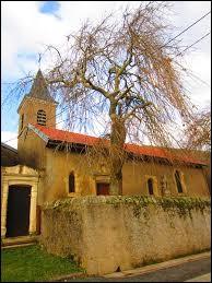 Voici l'église Saint-Michel d'Hannocourt. Petit village Mosellan de 22 habitants, il se situe en région ...