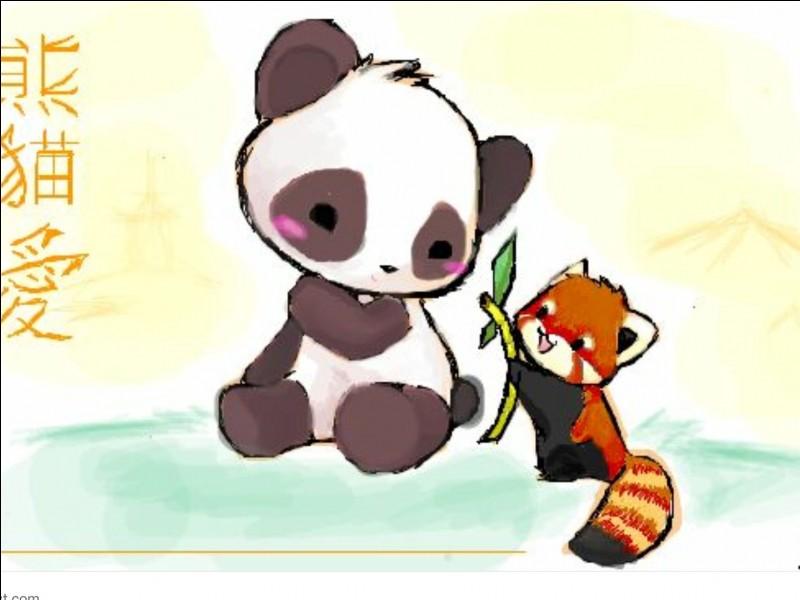 Le panda roux, son cousin, est souvent confondu avec un autre animal, lequel ?