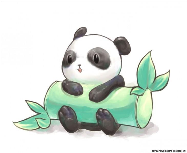 Le régime alimentaire du panda est...