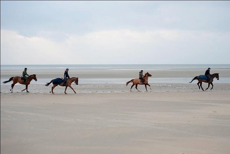 Tu as pratiqué l'équitation, sur l'immense plage de sable fin du Touquet. Quelle mer borde cette plage ?