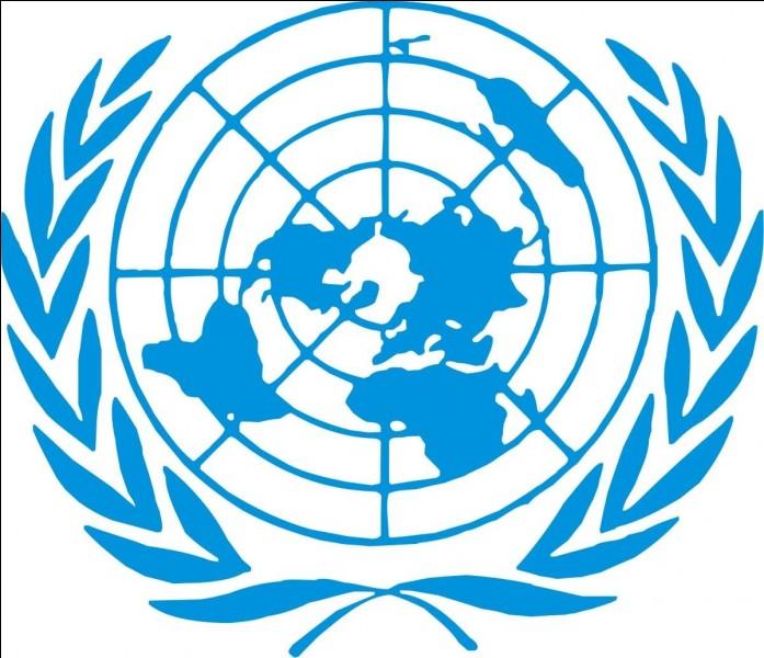 L'ONU dispose d'une force militaire internationale.