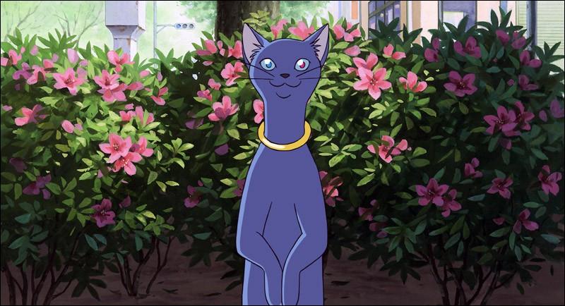 """Qui est ce chat, personnage du film japonais """"Le royaume des chats"""" ?"""