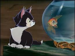 Dans quel dessin animé apparaît ce chat ?