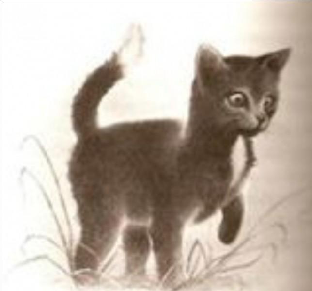 Quel chat quitte la forêt pour vivre dans une grange ?