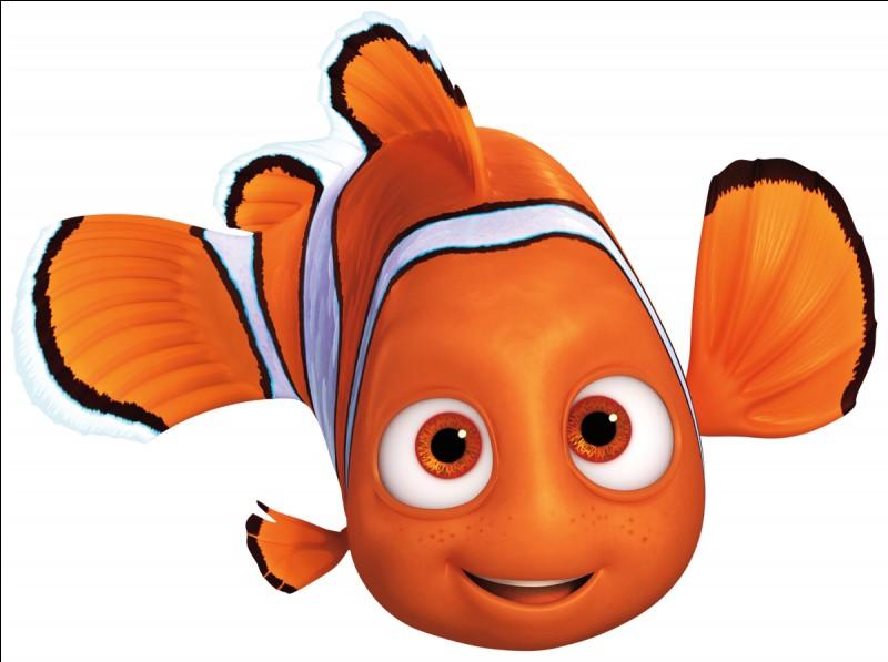 Un poisson-clown du nom de Marin mène une existence paisible avec son fils unique.