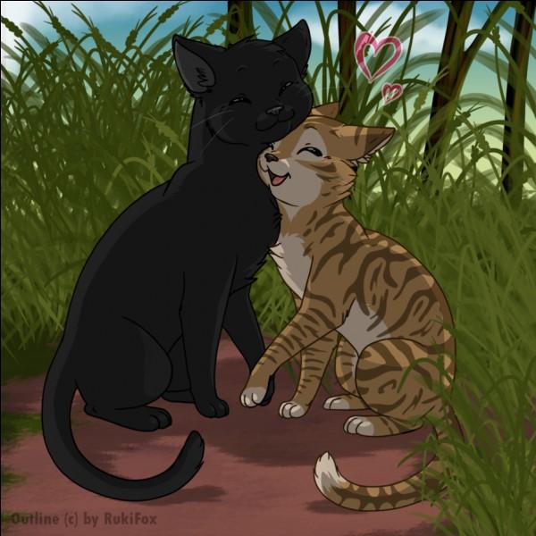 Comment s'appelait Plume de Jais quand il était chaton ?