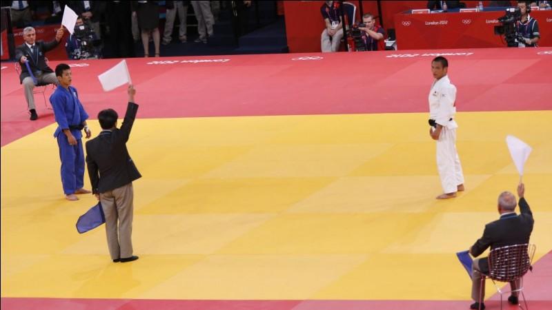Sur quoi pratique-t-on le judo ?