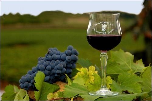Il serait dommage de ne pas finir cet excellent vin rouge produit en Touraine :