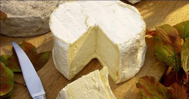 Voici un fromage à pâte molle à croûte fleurie :