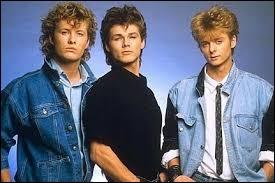 Lequel de ces groupes s'est formé en 1982 ?