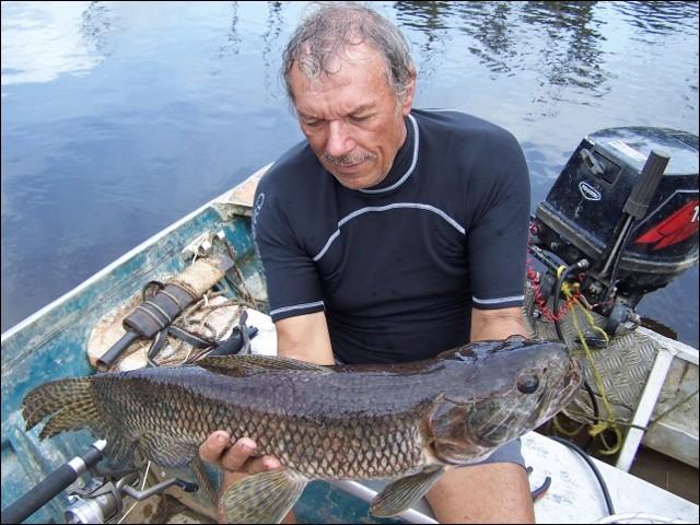 Identifiez ce poisson amazonien !