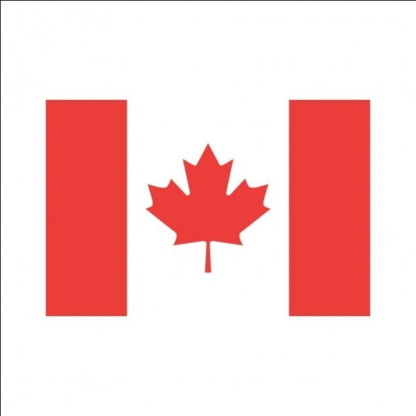 Que voit-on sur le drapeau du Canada?