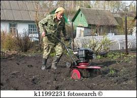 """Que trouvez-vous dans un potage """"cultivateur"""" ?"""