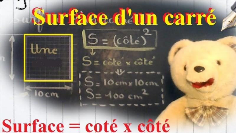 Mathématiques - Synonyme de superficie :