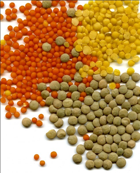 C'est une variété de lentille.