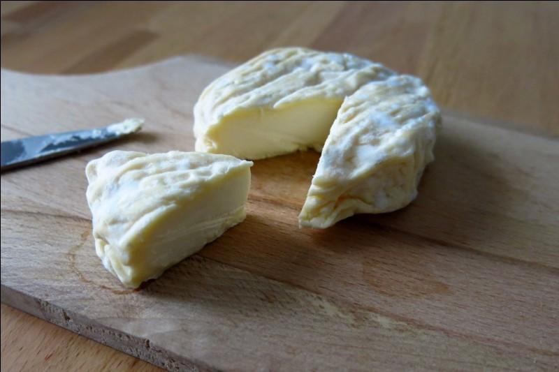 Dans quel département se situe la ville qui a donné son nom à ce fromage au lait de vache et croûte fleurie qui ressemble au Saint-Félicien ?