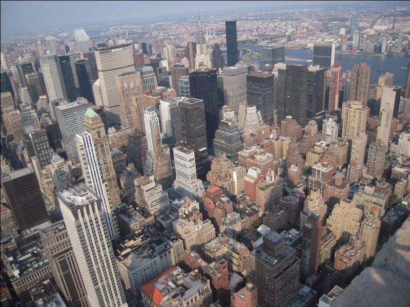 "J'ai vu New York New York U.S.A. J'ai vu New YorkNew York U.S.A. J'ai jamais rien vu d'eau J'ai jamais rien vu d'aussi haut Oh! c'est haut, c'est haut New York New York U.S.A..."" : qui chante ainsi ""New York U.S.A."" ?"