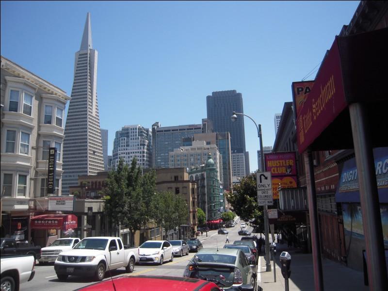 """ So far away from L.A. So far ago from Frisco I'm no one but a shadow But a shadow... A shadow..."" qui chante ""So far away from L.A"" ?"
