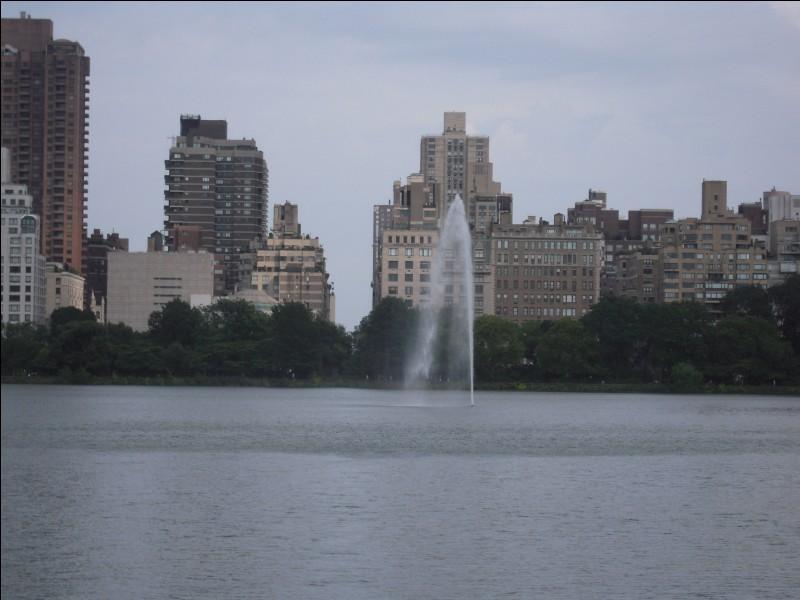 """"""" Dans les rues de Central Park Y a des noirs portoricains Qui bingbonguent du steel-band Et puis frappent avec les mains ... Dans la quarante-deuxième rue Y a Ken, Jerry et Sandra Qui vendent avec leur charrette Des bretzels et du coca..."""" : qui chante """"Manhattan"""", en 1974 ?"""