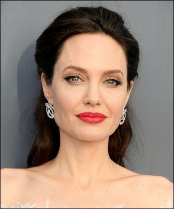 Dans quel film Angelina Jolie n'a-t-elle pas joué ?