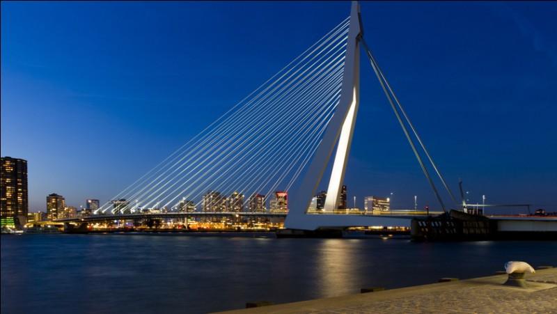 Il est bien beau, ce pont, quand on l'approche par l'eau, à bord d'une péniche, sur la Meuse. Il est nommé en l'honneur d'un philosophe humaniste, chanoine de Saint-Augustin qui y vécut au XVe siècle. Ce pont possède un pylône asymétrique de 139 m, ce qui lui vaut le surnom de cygne. Quel est son nom ?