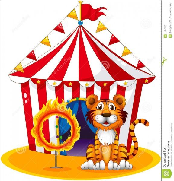 Quel rôle choisirais-tu au cirque ?