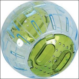 Les boules d'exercice sont-elles conseillées ?