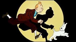 Sur quoi Tintin a-t-il marché ?