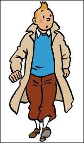 Où Tintin est-il allé ?