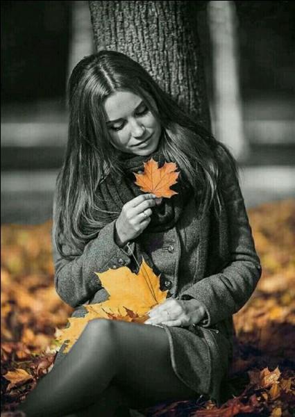 """""""Il pleut sur le jardin, sur le rivage..."""". Quel mois d'automne qualifie la ballade d'Anne Vanderlove ?"""