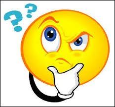 Dans la langue française, comment s'appellent nos petits questionnaires ?
