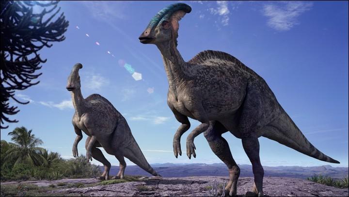 Combien de temps les dinosaures ont-ils vécu ?