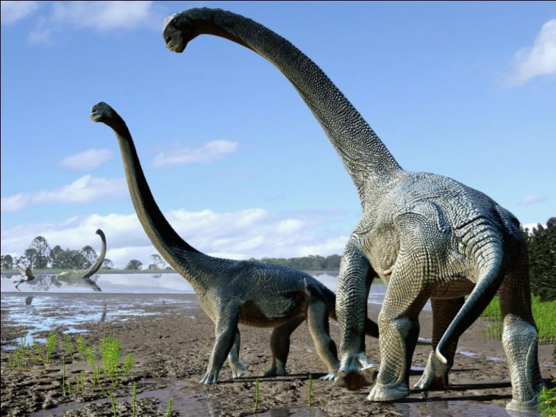 Le Fracosaurus est...