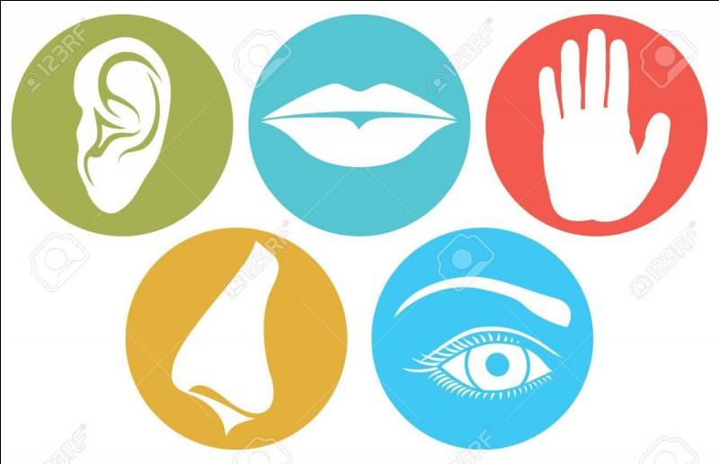 Vous êtes aveugle, sourd et muet. Combien vous reste-t-il de sens ?