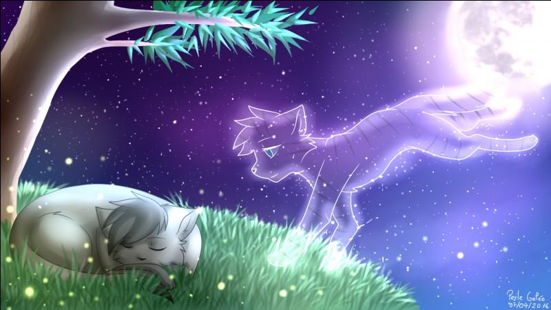 Je suis la fille du chat que ma tribu croyait être le chat qui nous sauvera.Qui suis-je ?