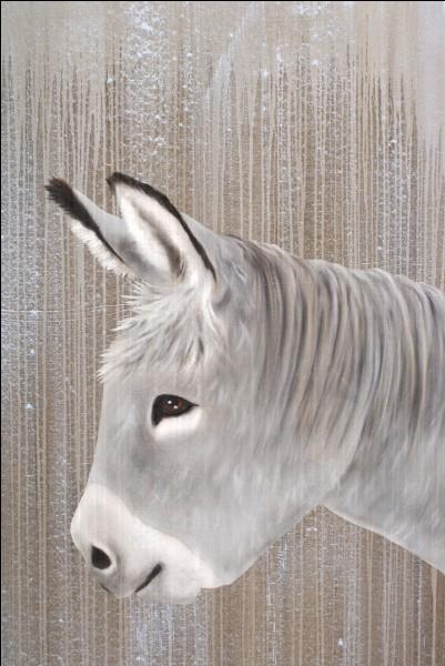 Que devient le petit âne gris à la fin de la chanson d'Hugues Aufray ?