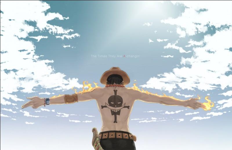 Qu'est-il inscrit sur le bras droit de Luffy ?