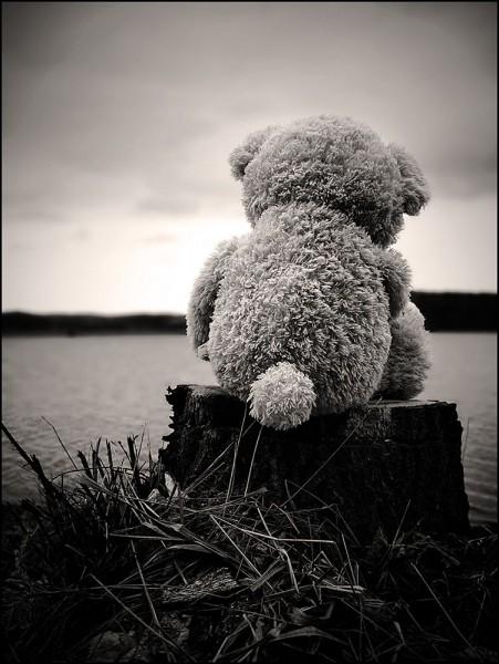 Comment se nommait la dernière ourse des Pyrénées abattue par un chasseur en 2004 ?