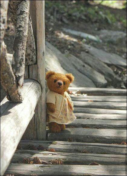 Comment appelle-t-on le collectionneur d'ours en peluche ?