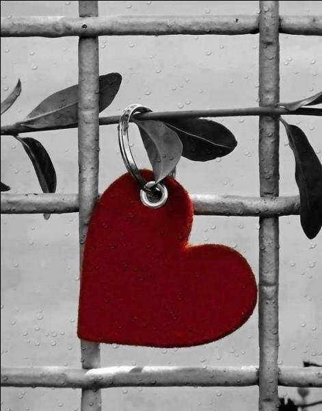 """Qui chantait """"Les histoires d'amour finissent mal..."""""""
