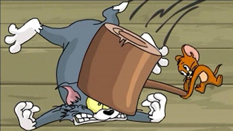 """Dans """"Tom et Jerry"""", qui est le chat ?"""