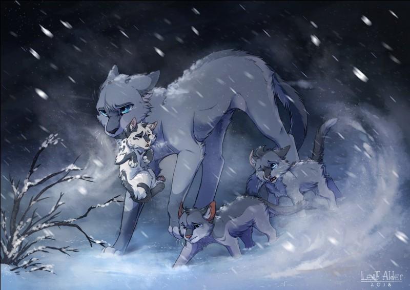 Lorsque une chatte rejoint le Clan des Étoiles alors qu'elle attend des petits, elle y accouche