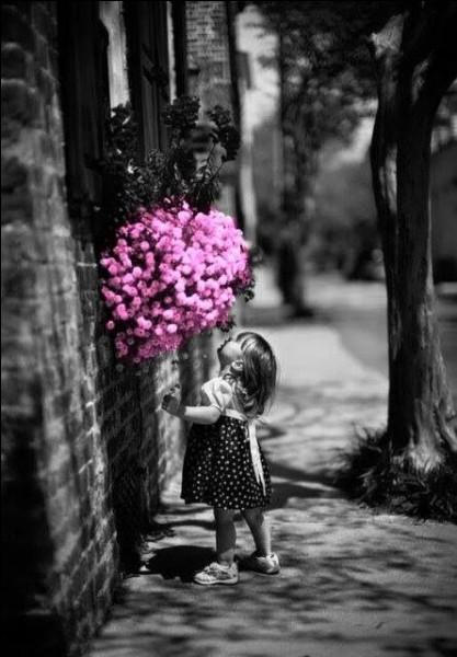 """Qui est l'interprète de """"Petite fille de ma rue, tu n'as jamais vu tous les bateaux, tous les oiseaux, tous les soleils"""" ?"""