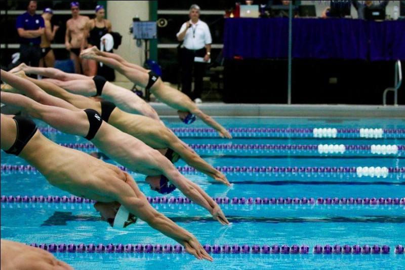 En natation, quelle est la nage la plus choisie par les concurrents ?
